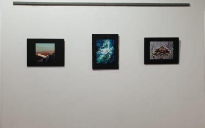 Més de 200 fotografies participen a un concurs d'Actua
